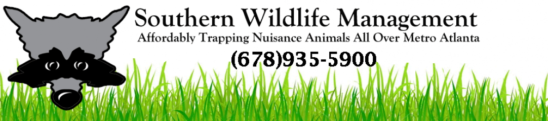 Southern Wildlife Management
